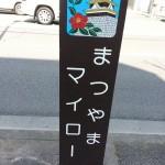 r松山椿サミット2014005