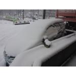 r雪003