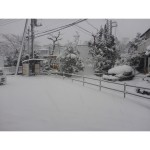 r雪002