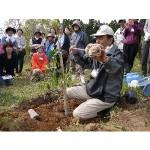 植樹ツアー2013-5in陸前高田002