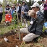 r椿植樹ツアー2014001