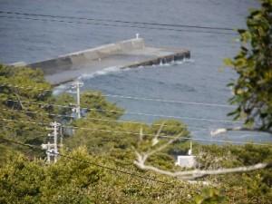 利島20130116訪問005